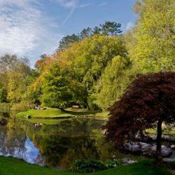 National-Stud-Gardens-3-mma0jads8ir8qez2574b6f2ydqkokiv251nlokhjzk