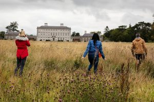 Castletown House and grounds