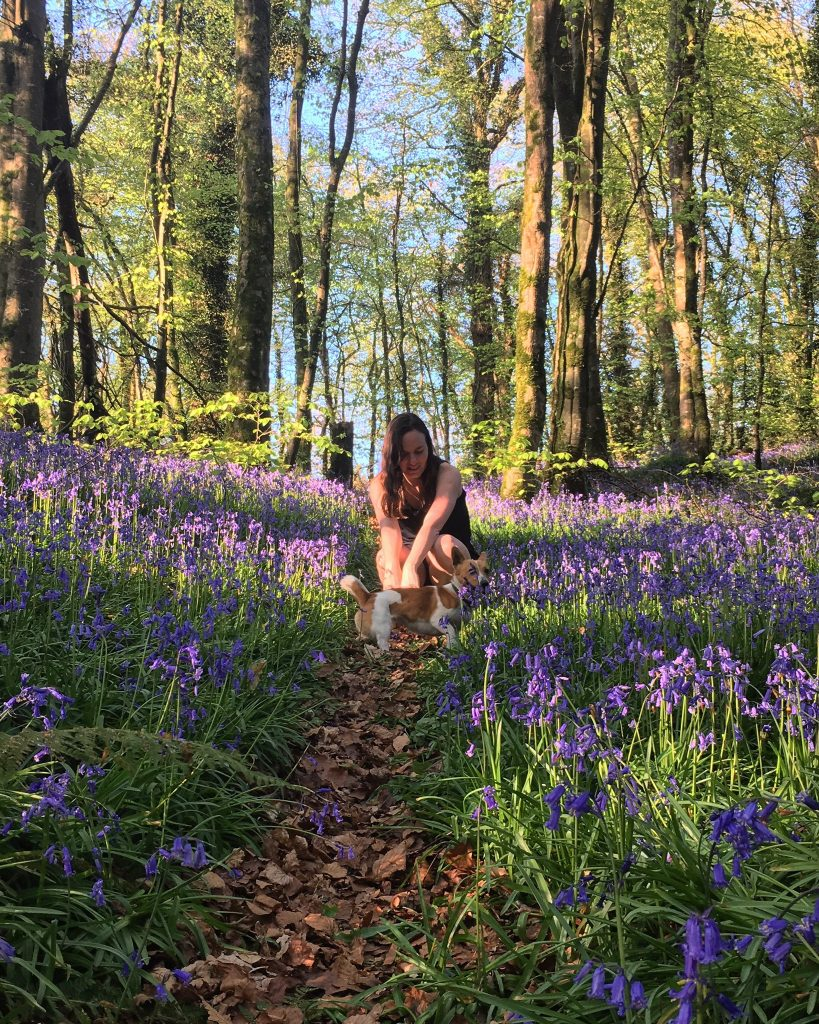 BE A TOURIST IN YOUR OWN COUNTY AND GET OUTDOORS IN KILDARE