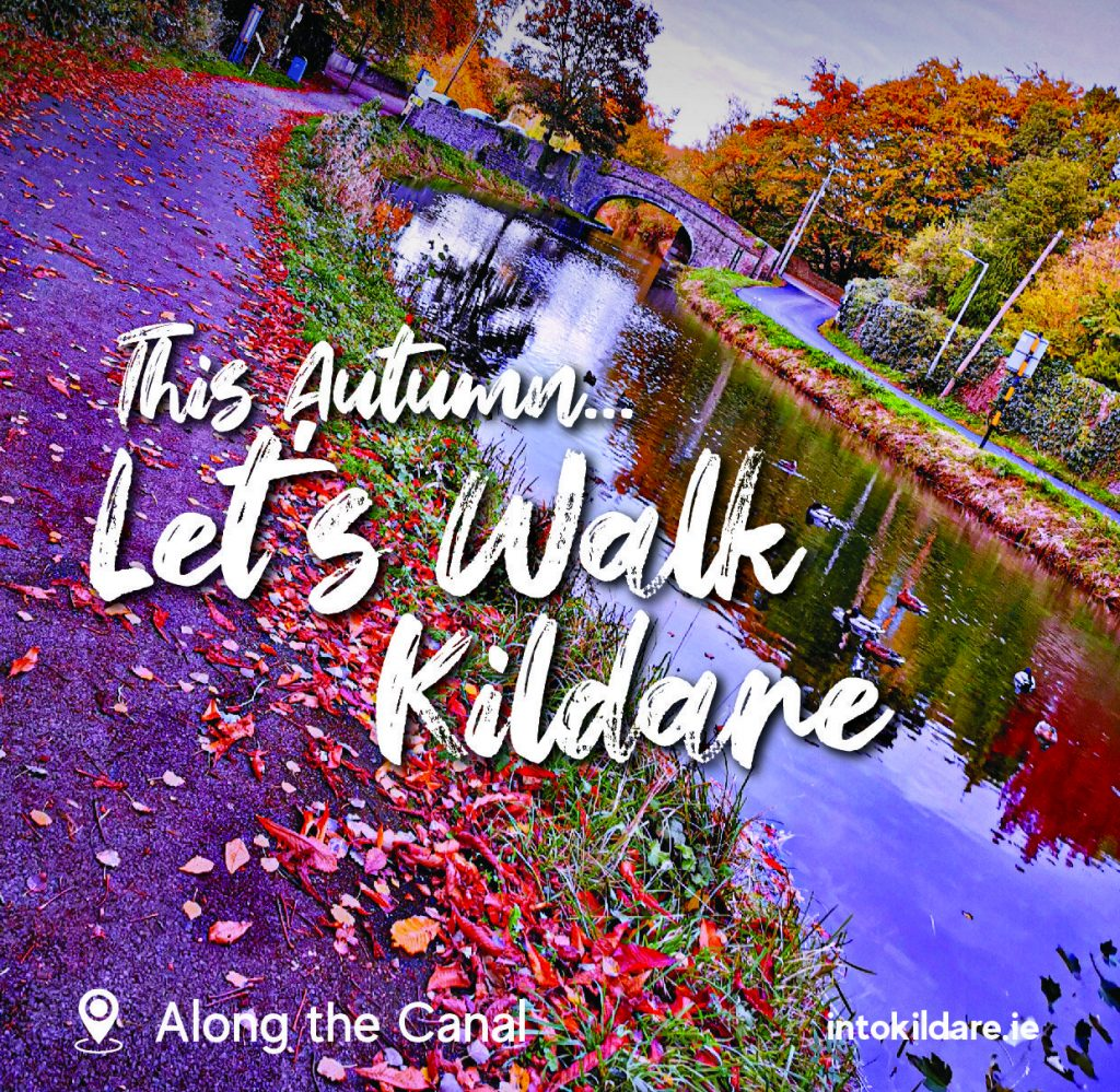 Lets Walk in Kildare this Autumn, Along the Canal