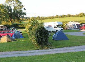 Forest Farm Caravan & Camping Park 1
