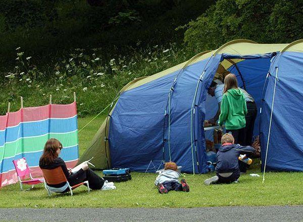 Forest Farm Caravan & Camping Park 3