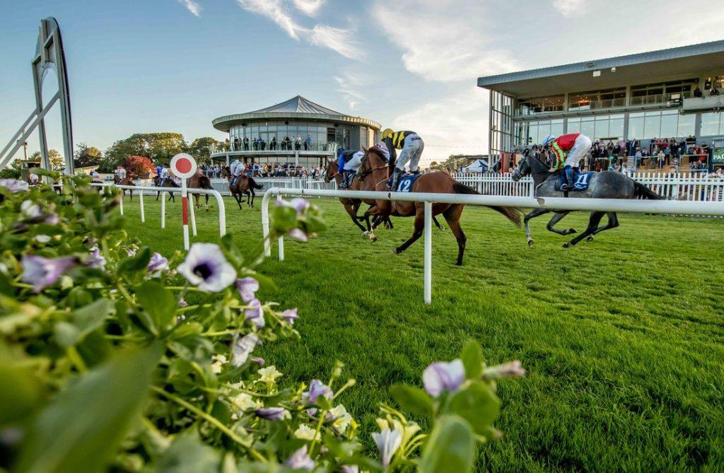 Naas Racecourse 5