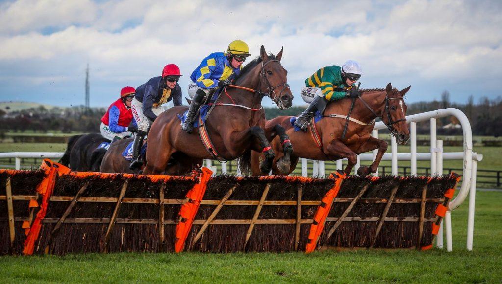 Naas Racecourse 8