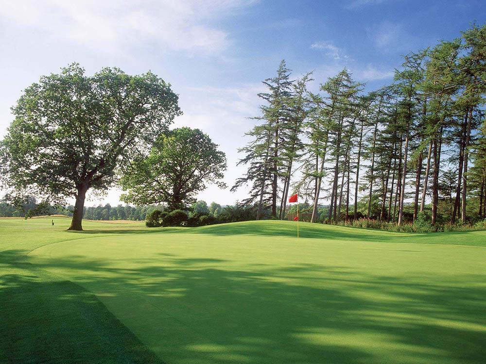 Carton House Golf 5