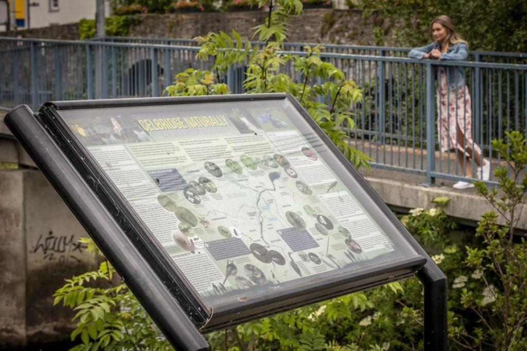 Celbridge Heritage Trail 3