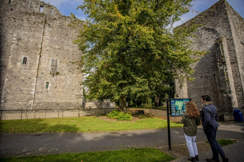 Maynooth Castle 3