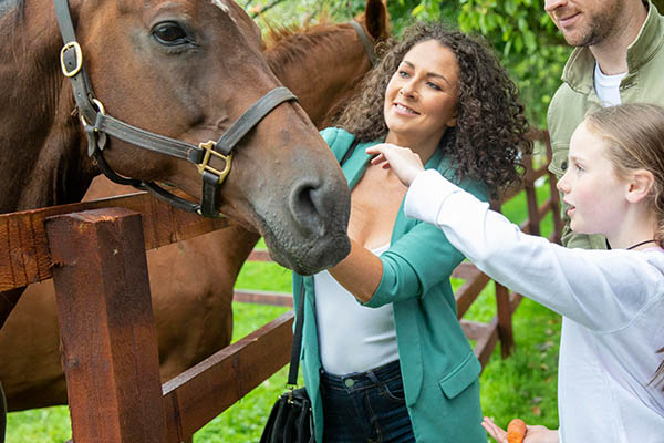 Things To Do Equestrian