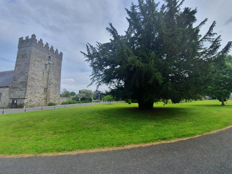 Maynooth Grounds